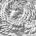 Simone Pheulpin: Fossile Textile